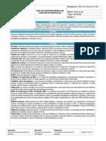 GIA-RED-002 Guia auditoria medica de contratos especiales_rv.pdf