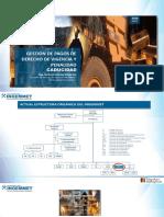 Obligaciones de Pago de Derecho de Vigencia y Penalidad - Caducidad - Ultima Version - Vfm
