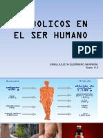 ANABOLICOS EN EL SER HUMANO.pptx