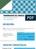 Neurobiología del lenguaje RUBY.pptx