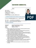 INGENIERO AMBIENTAL - cv.docx