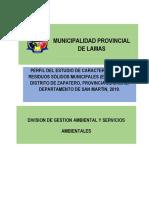 PERFIL DEL ESTUDIO DE CARACTERIZACIÓN DE RR.SS. MUNICIPALES - LAMAS.docx