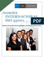 NORMA INTERNACIONAL ISO 45001