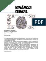 Dominancia Cerebral