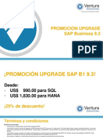Upgrade SAP business one