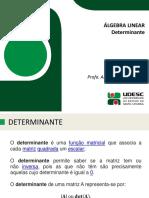 Aula+02+-+Determinantes