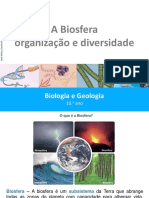 27 Biosfera.pptx