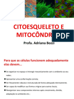 Aula 03 -Citoesqueleto e Mitocôndrias
