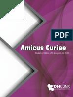 Amicus Curae Comité de Seguimiento y Evaluación del Programa de Derechos Humanos de la Ciudad de México