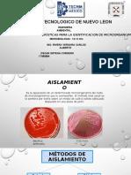 Aislamiento y Caracteristicas Para La Identificación de Microorganismos.