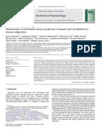 Mechanisms of metformin action AMPK silenced.pdf