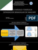 Escuela Maxilotoraxica Maccary