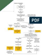 KERANGKA PIKIR DAN NURSING FENOMENA HCU.doc