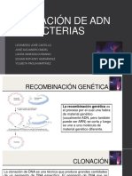 CLONACIÓN DE ADN EN BACTERIAS.pptx