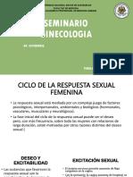 SEMINARIO GINECO.pptx