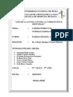 LAB-01-FORMAS-FARMACÉUTICAS-2019 (final).docx