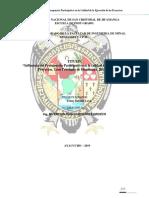 PLAN-DE-TESIS-10-PARA-PRESENTAR-AL-PROFESOR-OROSCO-ULTIMO.pdf