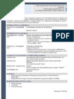 modelo de curriculum vitae (CV)