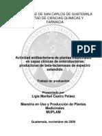 Actividad Antibacteriana de Plantas Medicinales en Cepas Clinic 4zRQPAT