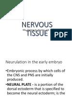 2. Nervous Tissue - Updated