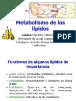 Lipidos y Beta Oxidacion de AG
