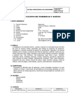 TUBEROSAS Y RAICES SILABO.docx