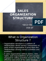 Sales Organization Structure