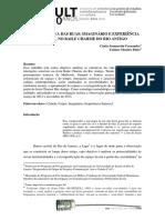 Artigo Interprogramas