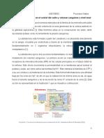 Papel de La Aldosterona en El Control Del Sodio y Volumen Sanguíneo a Nivel Renal