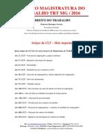 Revisão - Magistratura - TRT MG