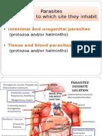 3 Parasitic Diseases (Melbert Sepe)