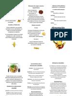 Tiptico de Alimentacion Saludable 6