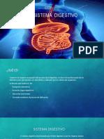 Sistema Digestivoo