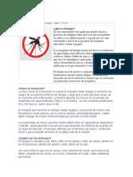 Dengue 2019 (2)