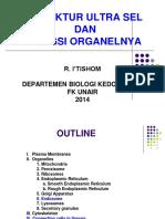 STRUKTUR ULTRA SEL 2014.pdf