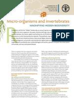 Fact Sheets Microorganism En