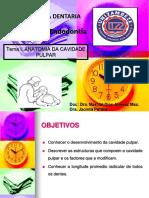 TEMA NO. 1. 1 ANATOMIA DA CAVIDADE PULPARtraduzido.pptx