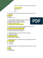 Preguntas Fisiopatologia n.-189