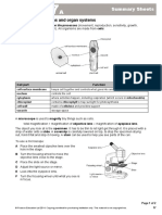 7a Summary Sheets
