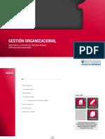 GESTION_ORGANIZACIONAL_MEDICION_DE_LA_GE.pdf