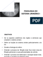Fisiologia-do-Sistema-Urinário-I.ppt