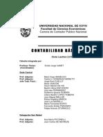 contabasicacpn2013.pdf