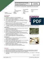 Actividade_Experimental_B3_Obs_Leveduras.pdf