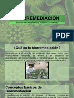 BIORREMEDIACIÓN Grupo1