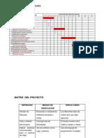cronograma de actividades modelo