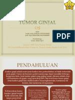 Laporan Kasus Tumor urogenital