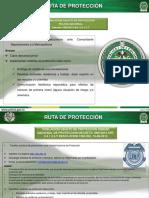Ruta de proteccion