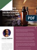 Os Incríveis Benefícios da Aromaterapia - André Ferraz.pdf