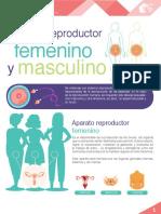 M16_S3_Sistema reproductor femenino y masculino.pdf