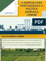 A Agricultura Portuguesa e a Política Agrícola Comum Arinda